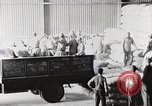 Image of Palestinian Arab Refugees Egypt, 1950, second 21 stock footage video 65675023180