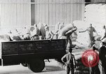 Image of Palestinian Arab Refugees Egypt, 1950, second 23 stock footage video 65675023180