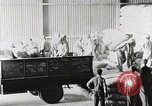 Image of Palestinian Arab Refugees Egypt, 1950, second 24 stock footage video 65675023180