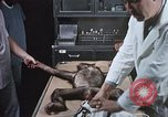 Image of Chimpanzee for spacecraft testing United States USA, 1960, second 30 stock footage video 65675023323