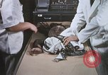 Image of Chimpanzee for spacecraft testing United States USA, 1960, second 38 stock footage video 65675023323