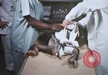 Image of Chimpanzee for spacecraft testing United States USA, 1960, second 52 stock footage video 65675023323