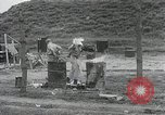 Image of Pusan Perimeter in Korean War Korea, 1950, second 25 stock footage video 65675024694