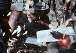 Image of jungle trail Vietnam, 1968, second 7 stock footage video 65675030468