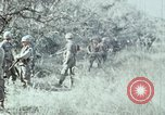 Image of jungle trail Vietnam, 1968, second 39 stock footage video 65675030468