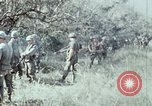 Image of jungle trail Vietnam, 1968, second 40 stock footage video 65675030468