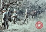 Image of jungle trail Vietnam, 1968, second 43 stock footage video 65675030468