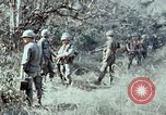 Image of jungle trail Vietnam, 1968, second 44 stock footage video 65675030468