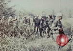 Image of jungle trail Vietnam, 1968, second 50 stock footage video 65675030468