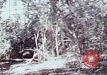 Image of jungle trail Vietnam, 1968, second 55 stock footage video 65675030468
