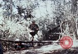 Image of jungle trail Vietnam, 1968, second 61 stock footage video 65675030468