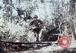 Image of jungle trail Vietnam, 1968, second 62 stock footage video 65675030468