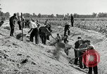 Image of Great Depression programs for improved roads and facilities Ohio United States USA, 1937, second 53 stock footage video 65675030502