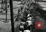 Image of jobs at factories in America during Great Depression United States USA, 1932, second 34 stock footage video 65675030527