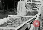 Image of Goodyear rubber heel manufacture Windsor Vermont USA, 1941, second 20 stock footage video 65675030565