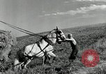 Image of Truck loaded with hay Saint Clairsville Ohio USA, 1940, second 7 stock footage video 65675030604