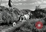 Image of Truck loaded with hay Saint Clairsville Ohio USA, 1940, second 15 stock footage video 65675030604