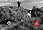 Image of Truck loaded with hay Saint Clairsville Ohio USA, 1940, second 17 stock footage video 65675030604