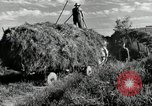 Image of Truck loaded with hay Saint Clairsville Ohio USA, 1940, second 18 stock footage video 65675030604