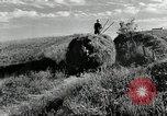 Image of Truck loaded with hay Saint Clairsville Ohio USA, 1940, second 23 stock footage video 65675030604