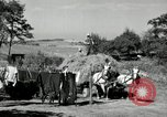 Image of Truck loaded with hay Saint Clairsville Ohio USA, 1940, second 42 stock footage video 65675030604