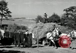 Image of Truck loaded with hay Saint Clairsville Ohio USA, 1940, second 44 stock footage video 65675030604