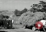 Image of Truck loaded with hay Saint Clairsville Ohio USA, 1940, second 47 stock footage video 65675030604