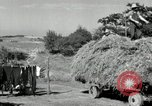 Image of Truck loaded with hay Saint Clairsville Ohio USA, 1940, second 48 stock footage video 65675030604