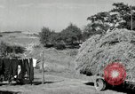 Image of Truck loaded with hay Saint Clairsville Ohio USA, 1940, second 49 stock footage video 65675030604