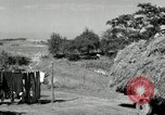 Image of Truck loaded with hay Saint Clairsville Ohio USA, 1940, second 50 stock footage video 65675030604