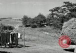 Image of Truck loaded with hay Saint Clairsville Ohio USA, 1940, second 51 stock footage video 65675030604