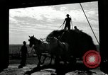 Image of Truck loaded with hay Saint Clairsville Ohio USA, 1940, second 59 stock footage video 65675030604