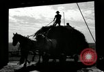 Image of Truck loaded with hay Saint Clairsville Ohio USA, 1940, second 60 stock footage video 65675030604