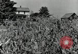 Image of farmers learn about REA Saint Clairsville Ohio USA, 1940, second 3 stock footage video 65675030606