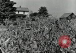 Image of farmers learn about REA Saint Clairsville Ohio USA, 1940, second 4 stock footage video 65675030606
