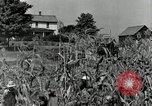 Image of farmers learn about REA Saint Clairsville Ohio USA, 1940, second 11 stock footage video 65675030606