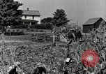 Image of farmers learn about REA Saint Clairsville Ohio USA, 1940, second 15 stock footage video 65675030606