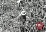 Image of farmers learn about REA Saint Clairsville Ohio USA, 1940, second 22 stock footage video 65675030606