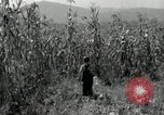 Image of farmers learn about REA Saint Clairsville Ohio USA, 1940, second 25 stock footage video 65675030606