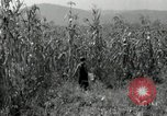Image of farmers learn about REA Saint Clairsville Ohio USA, 1940, second 26 stock footage video 65675030606