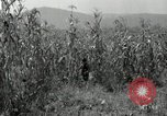Image of farmers learn about REA Saint Clairsville Ohio USA, 1940, second 28 stock footage video 65675030606