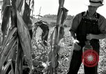 Image of farmers learn about REA Saint Clairsville Ohio USA, 1940, second 34 stock footage video 65675030606