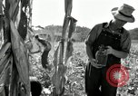Image of farmers learn about REA Saint Clairsville Ohio USA, 1940, second 35 stock footage video 65675030606