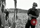Image of farmers learn about REA Saint Clairsville Ohio USA, 1940, second 36 stock footage video 65675030606