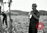 Image of farmers learn about REA Saint Clairsville Ohio USA, 1940, second 37 stock footage video 65675030606