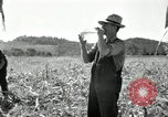 Image of farmers learn about REA Saint Clairsville Ohio USA, 1940, second 38 stock footage video 65675030606