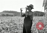 Image of farmers learn about REA Saint Clairsville Ohio USA, 1940, second 39 stock footage video 65675030606