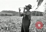 Image of farmers learn about REA Saint Clairsville Ohio USA, 1940, second 40 stock footage video 65675030606