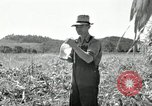 Image of farmers learn about REA Saint Clairsville Ohio USA, 1940, second 42 stock footage video 65675030606