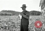 Image of farmers learn about REA Saint Clairsville Ohio USA, 1940, second 43 stock footage video 65675030606